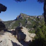 4 Cardo natura paisatge
